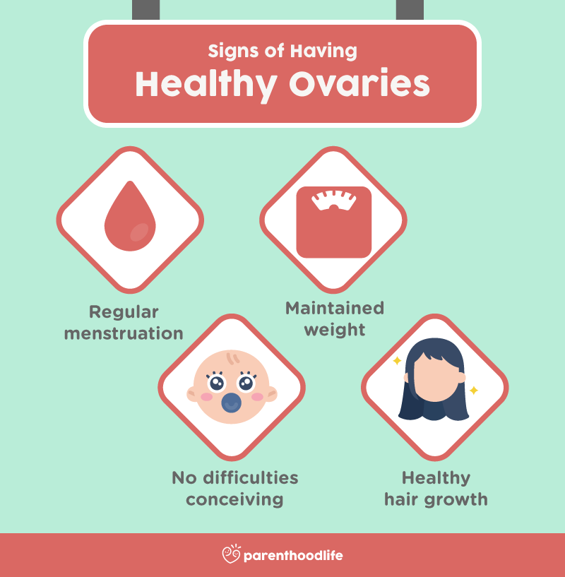 Signs of Having Healthy Ovaries